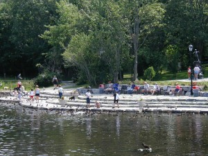 Bowring Park Duck Pond