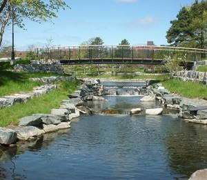 Bowring Park Habitat Enhancement