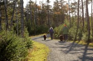 Voisey's Brook Conservation Trails